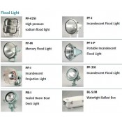 Flood Light (12)